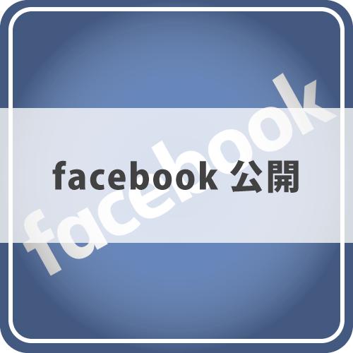Facebook公開